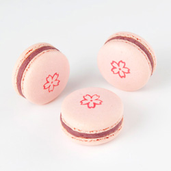 SakuraDelice250