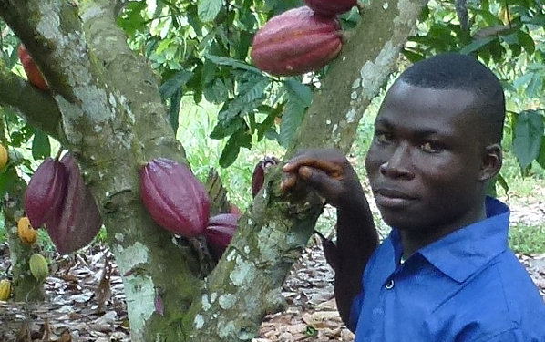 Farmer_Kwabena_Nimo_8.1